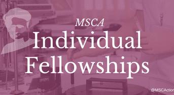 European Union Marie Sklodowska-Curie Individual Fellowships (IF) for Worldwide Researchers, 2018