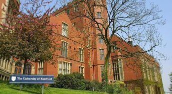 International Undergraduate Scholarship at University of Sheffield in UK, 2019