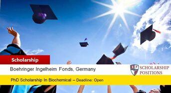 BIF Travel Grants for European or Non-EuropeanCitizens in Germany, 2019