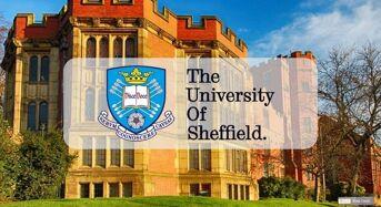 International Baccalaureate Scholarship at University of Sheffield in UK, 2020