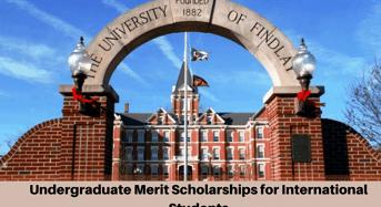 Undergraduate merit awards for International Students at University of Findlay, USA