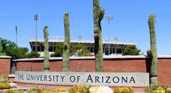Global Wildcat Freshman Tuition Award at University of Arizona in USA, 2020