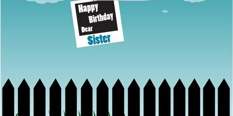 Happy Birthday Dear Sister Greeting 8