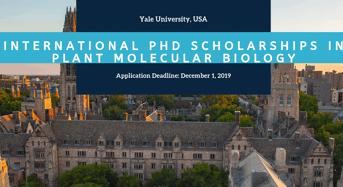 Yale University International PhD Positionsin Plant Molecular Biology in the USA
