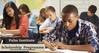 Scholarships at Palm Institute, Ghana
