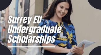Surrey EU undergraduate financial aid in UK