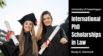 International PhD Positionsin Law, Denmark