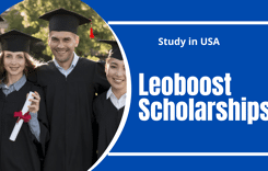 Leoboost Scholarships in USA