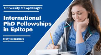 University of Copenhagen International PhD Fellowships in Epitope, Denmark