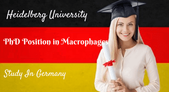 International PhD Position in Macrophages, Germany