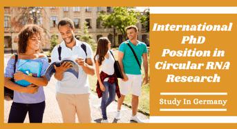 International PhD Position in Circular RNA Research, Germany