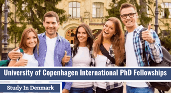 International PhD Fellowship in Human-CenteredData Science and Computer Supported Cooperative Work, Denmark