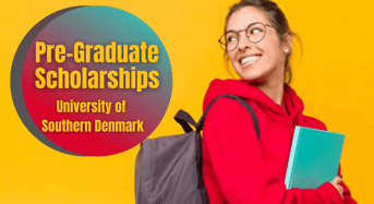 Pre- graduate funding opportunities at University of Southern Denmark
