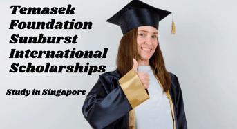 Temasek Foundation Sunburst international awards in Singapore
