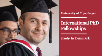 International PhD Fellowships in Experimental Aspects of Non-AbelianCondensed Matter Physics in Denmark