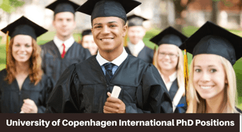 International PhD Positions in Theoretical and Computational Chemistry, Denmark