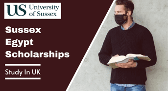 Sussex Egypt Scholarships in the UK, 2022