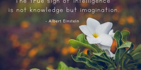 Albert Einstein's Quote about Imagination 29